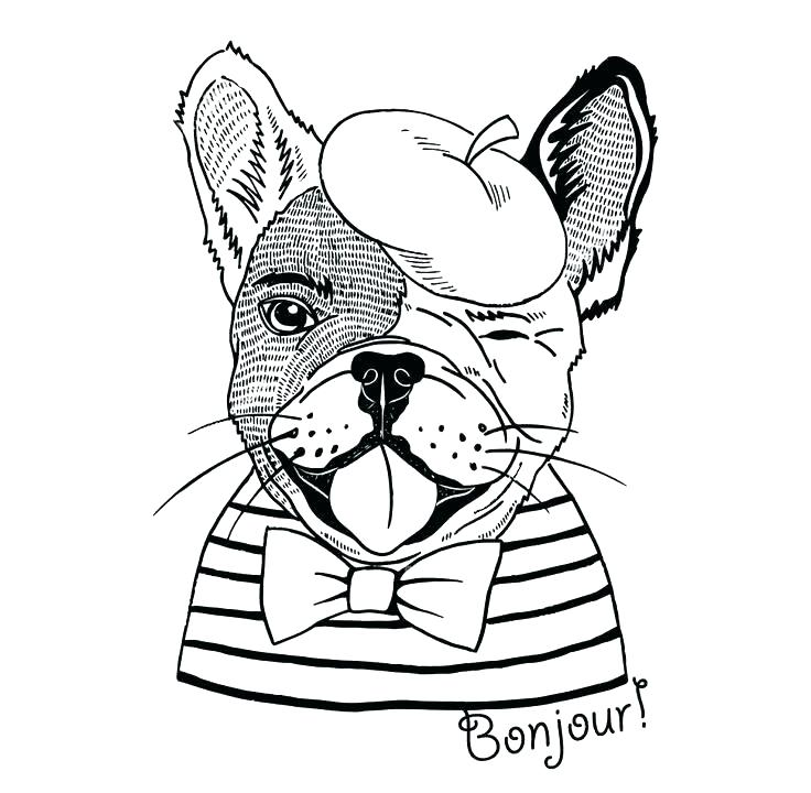 bulldog coloring pages best coloring pages for kids