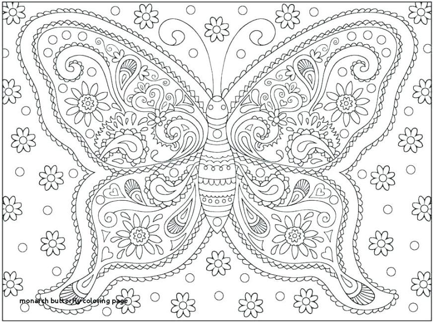 butterfly coloring pages pdf africaecommerceco