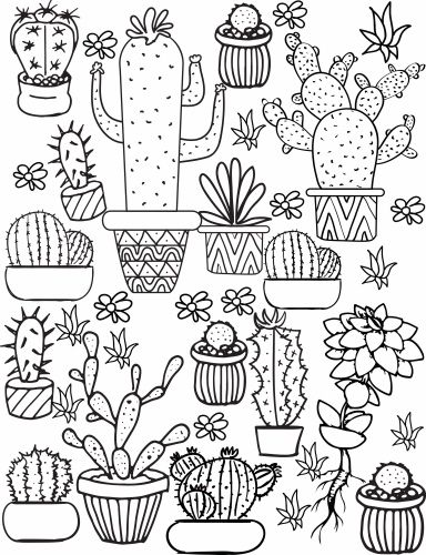 cactus and succulent printable adult coloring pages muster