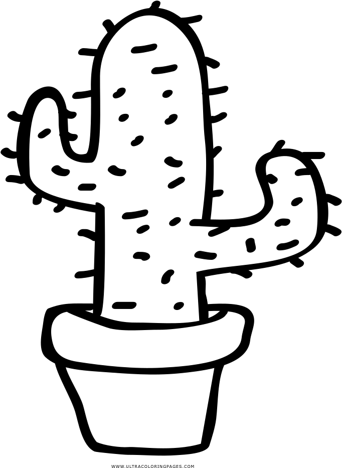 cactus coloring page prickly pear clipart full size