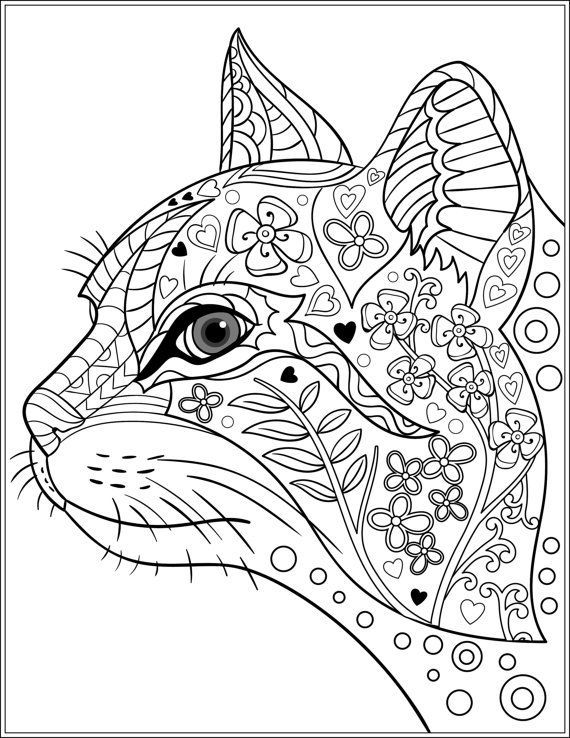 cat coloring pages for adults adult coloring pages