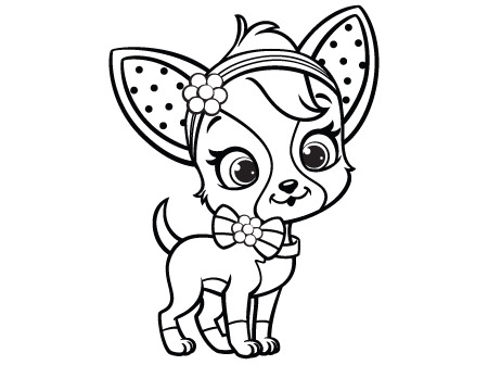 chihuahua dog coloring pages at getdrawings free for