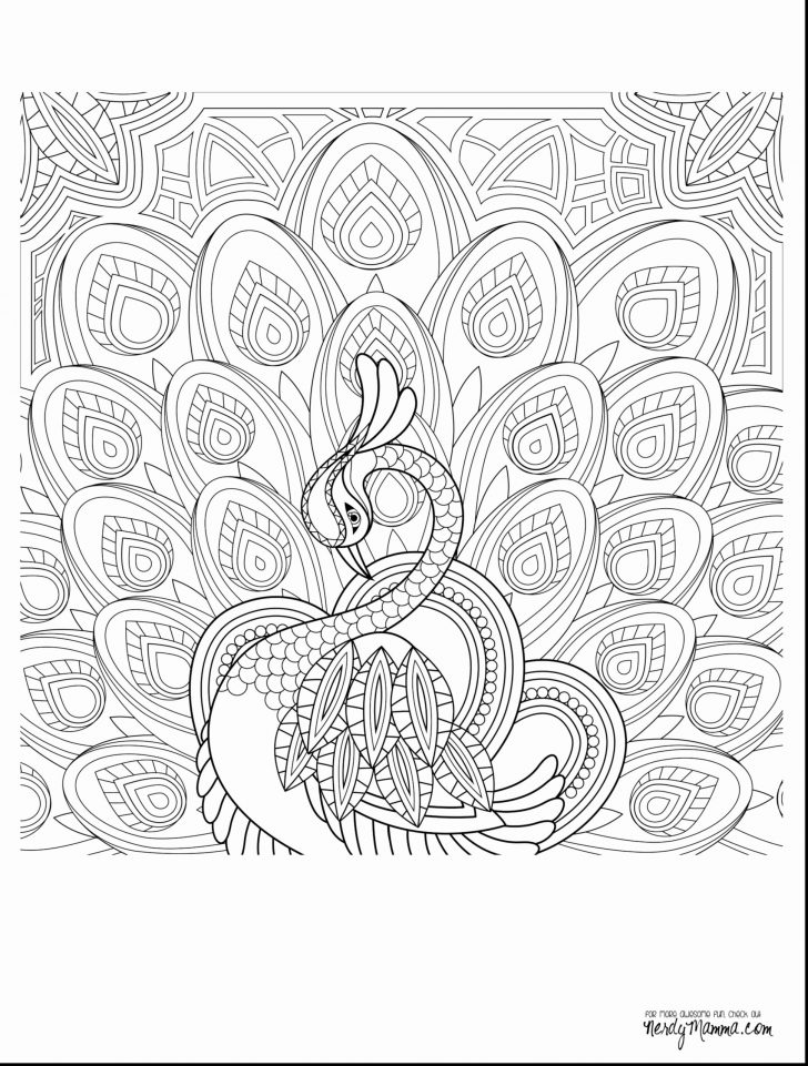 coloring books adult coloring snow white book grayscale