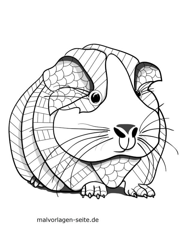 coloring page animal mandala guinea pig animals mandalas