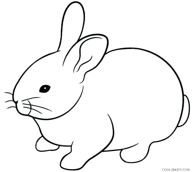 coloring page bunny printable coloring pages rabbits kids