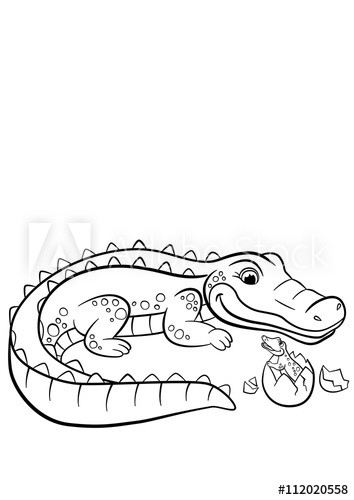coloring pages animals mother alligator looks at her