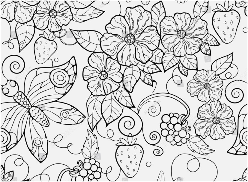 coloring pages floral images butterfly pattern flowers