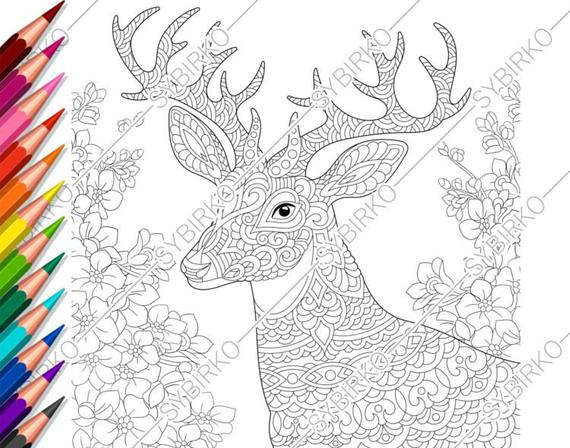 coloring pages for adults deer flowers adult coloring pages animal coloring pages digital jpg pdf coloring page instant download