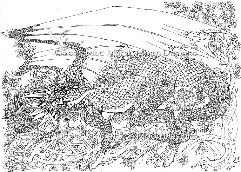 coloring pages for adults dragon pusat hobi