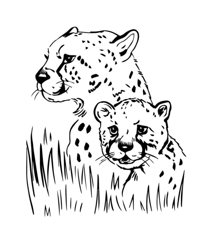 coloring pages ideas 99 astonishing jaguar coloring pages