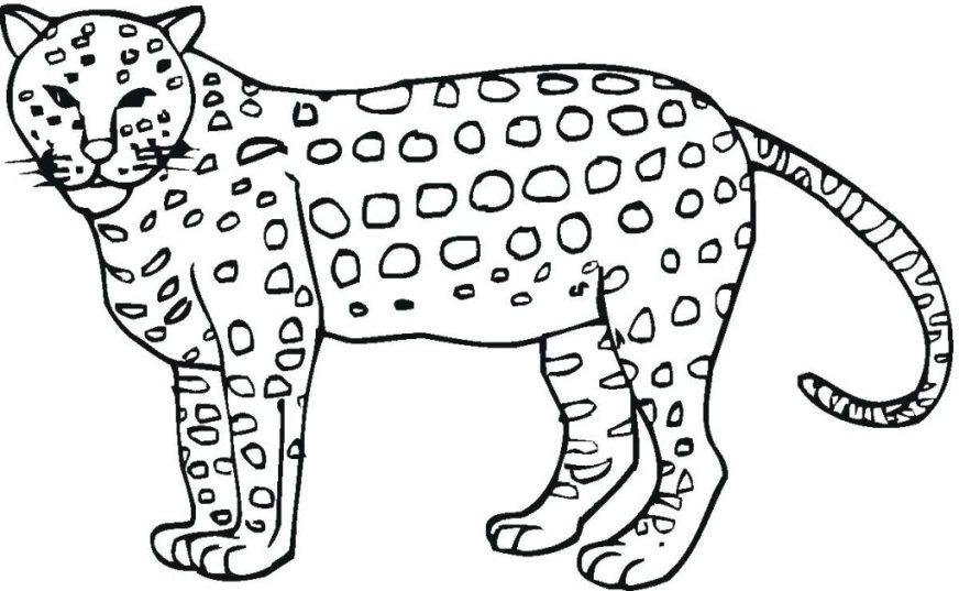 coloring pages ideas astonishing jaguar coloring pages
