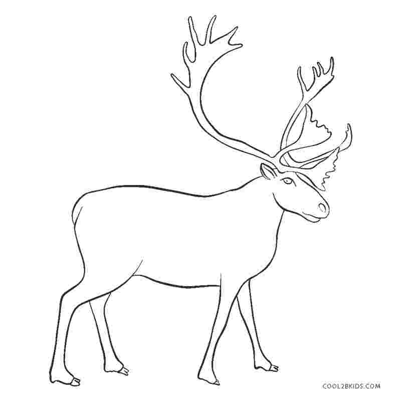 coloring pages of a reindeer free christian coloring pages