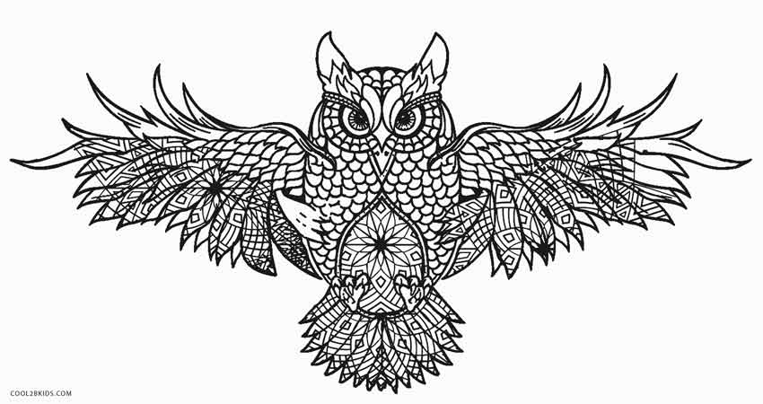 coloring pages of an owl