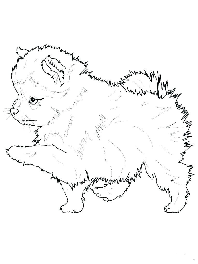 coloring pages of puppies vimefullandco