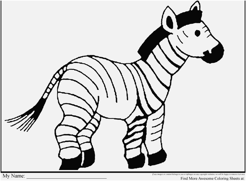 - Zoo Animal Coloring Pages Ideas - Whitesbelfast
