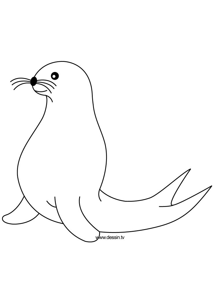 coloring seal