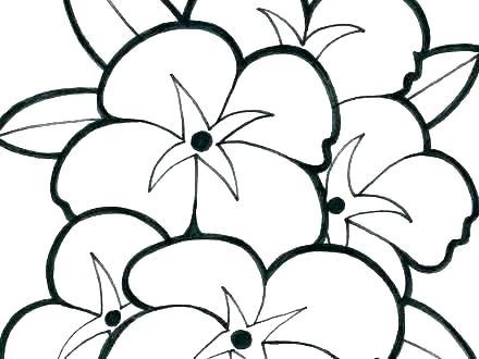 coloring sheet for spring flowers hottestnews