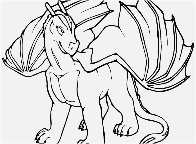 coloring sheets for adults dragons portraits real dragon