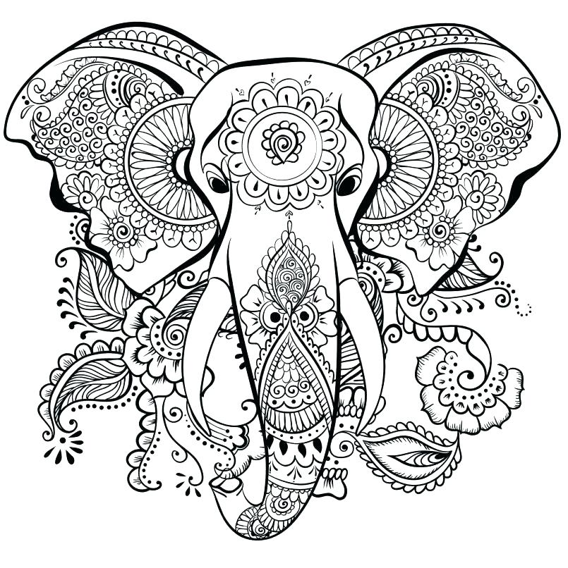 colouring pages for adults elephant pusat hobi