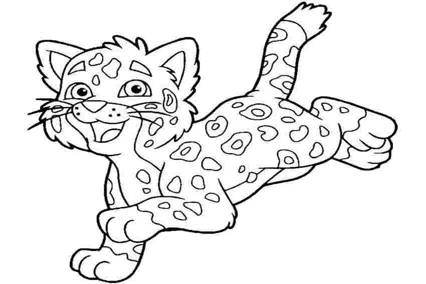 colouring pages of jaguar huangfei