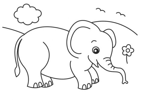 cute ba elephant coloring pages part 5
