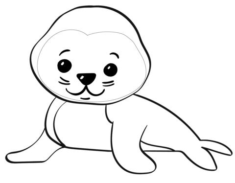 cute cartoon seal omalovnka free printable coloring pages