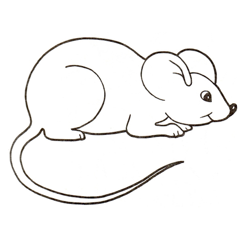 cute house mouse coloring page free printable coloring pages