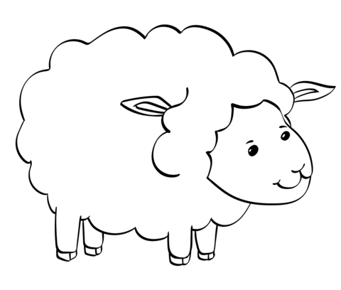 cute sheep coloring page free printable coloring pages