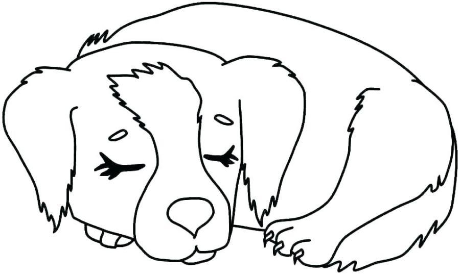 dog coloring sheets vimefullandco