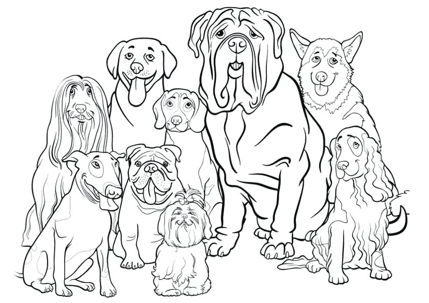 dogs coloring page soidesign