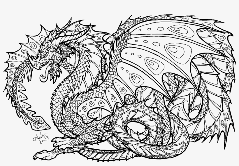dragon pictures coloring pages printable dragon coloring