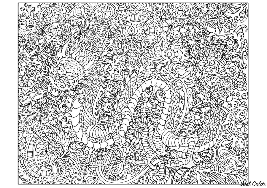 dragon very complex vera dragons adult coloring pages