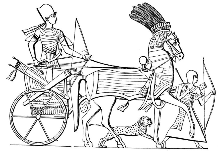 egyptian coloring pages at getdrawings free for