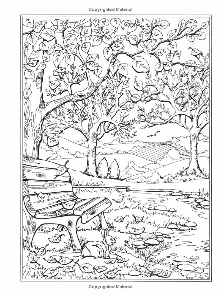 enchanted forest coloring pages adult coloring book nice