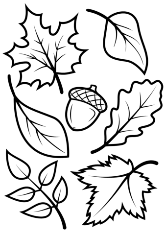 fall leaves and acorn coloring page free printable