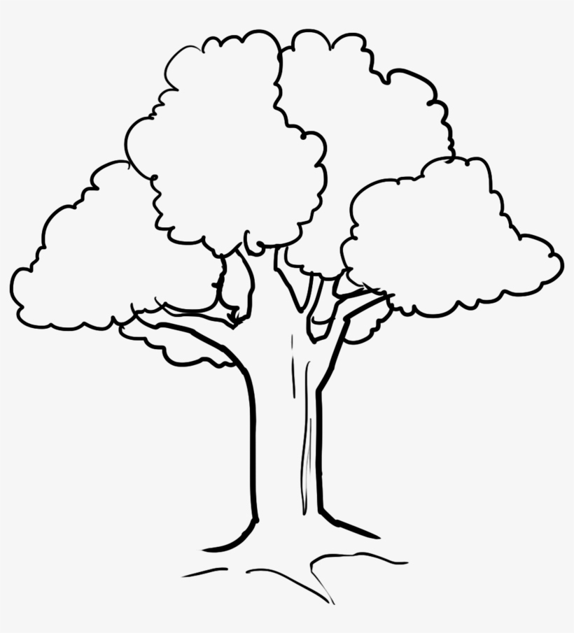 fall tree drawing at getdrawings cute tree coloring pages