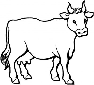 farm craft cow coloring page cow coloring pages cow