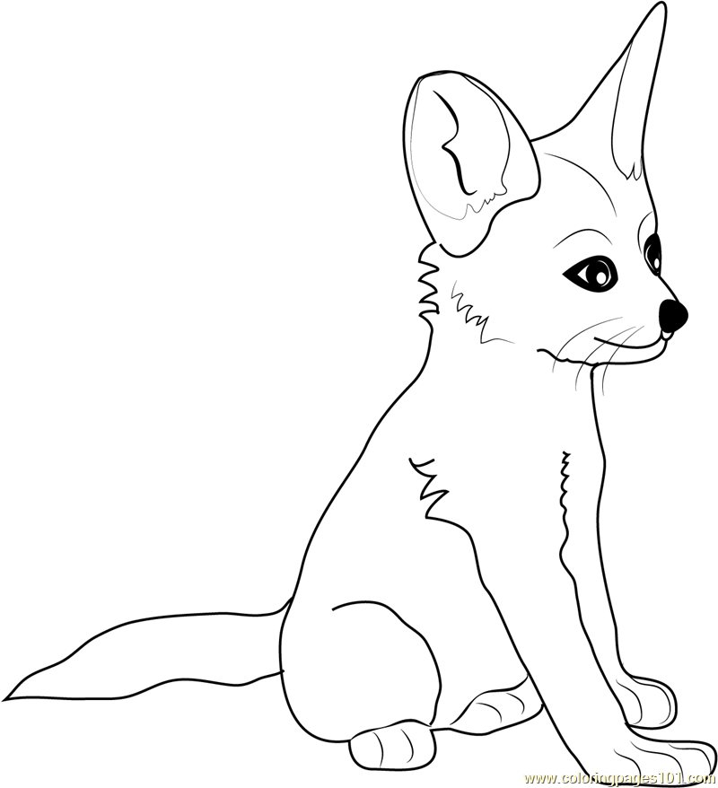 fennec fox ba coloring page free fox coloring pages