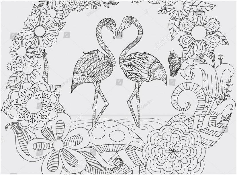 flamingo coloring pages pics zendoodle design two cute