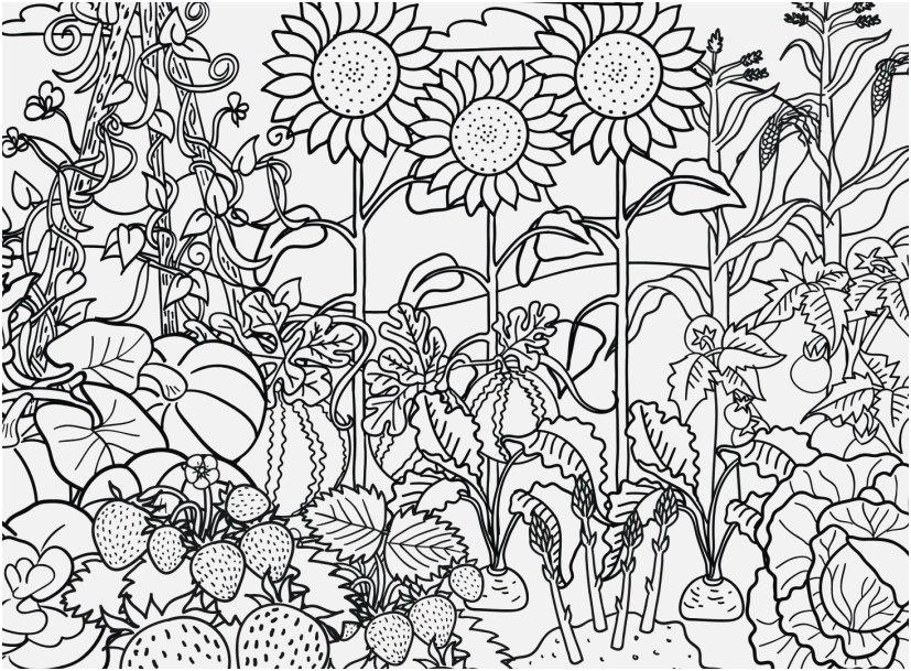Garden Coloring Pages Idea - Whitesbelfast