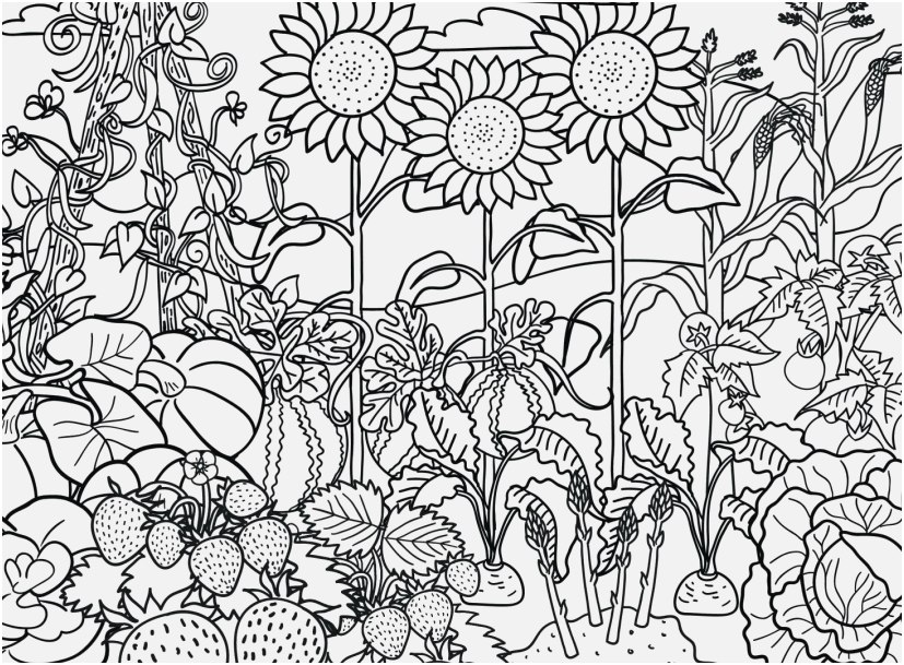 flower garden coloring pages images flower garden colouring