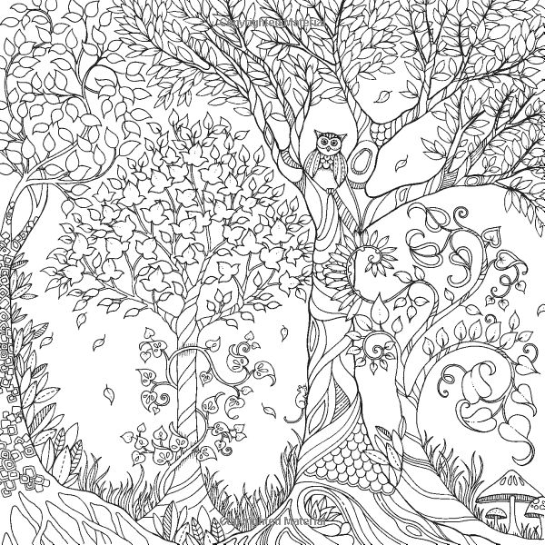 forest 31 nature printable coloring pages
