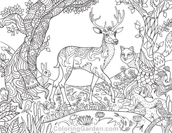 forest creatures adult coloring page deer coloring pages