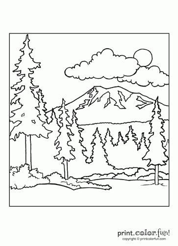 forest scene print color fun free printables coloring
