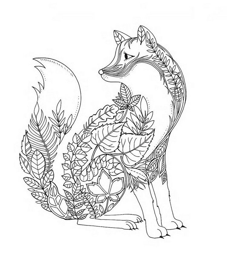 fox coloring pages for adults google search fox coloring