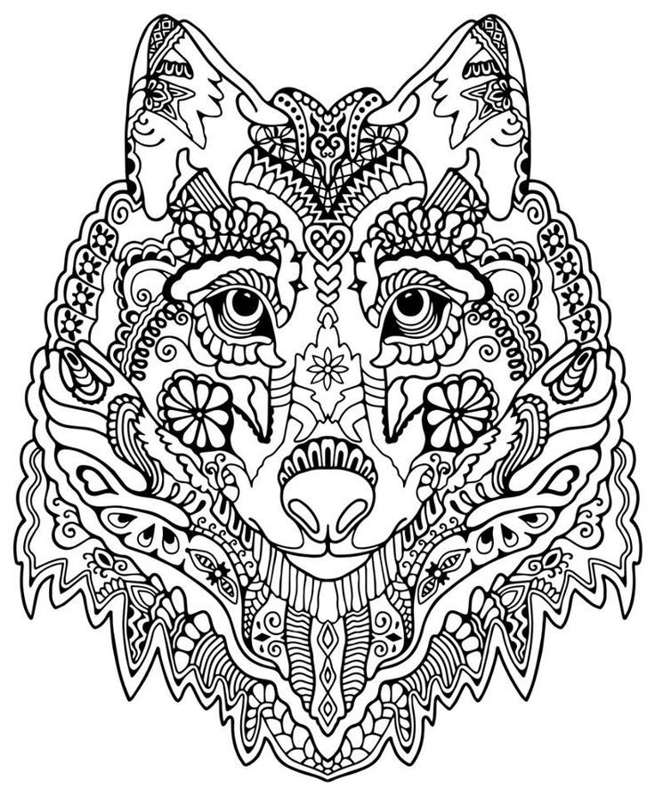 free coloring pages for adults animals download free clip
