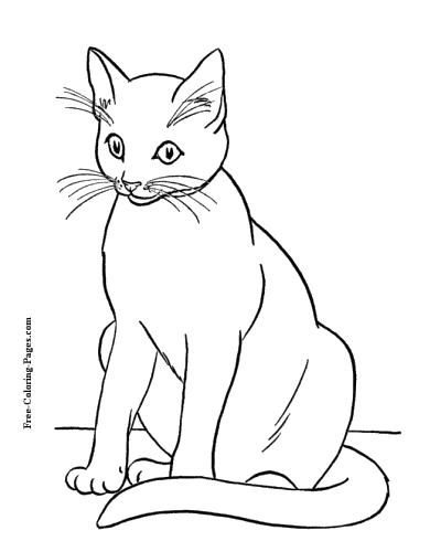 free coloring printables cats pusat hobi