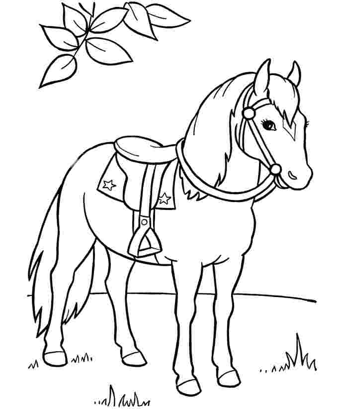 free printable coloring horses running horse coloring page