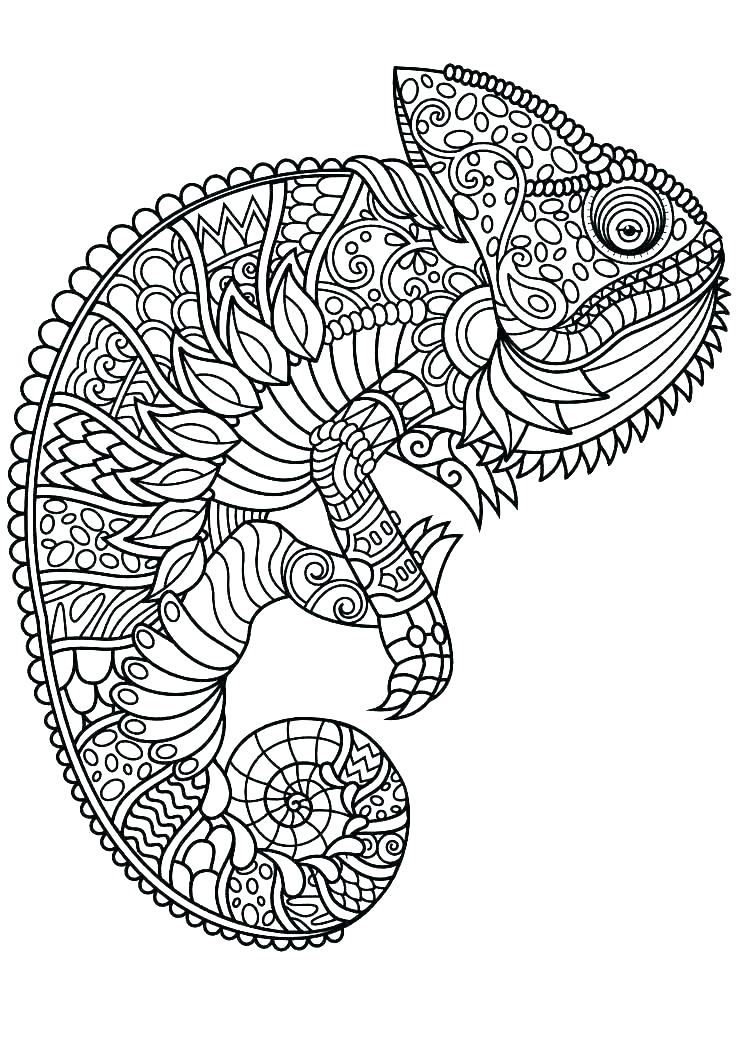 free printable colouring sheets animals pusat hobi
