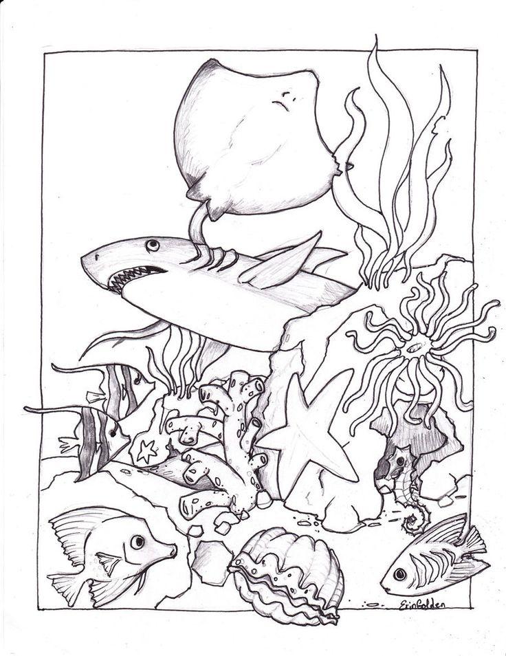 free printable ocean coloring pages for kids ocean